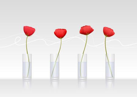 Four red poppy-flowers in glass vases