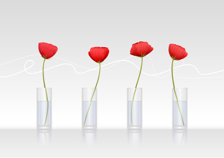 Four red poppy-flowers in glass vases Vector