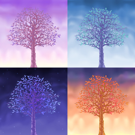 대기의: Four sky trees - morning, day, evening and night 일러스트