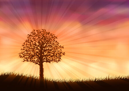 Orange summer tree (other landscapes are in my gallery)