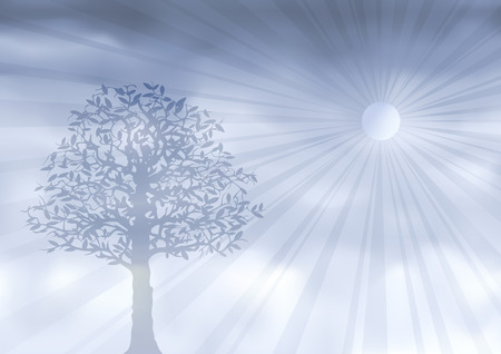 Ghostly silver tree (other landscapes are in my gallery) Stock Vector - 6096856