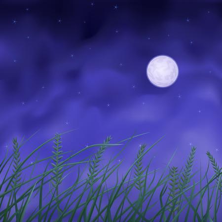 Wheat field under full moon at night