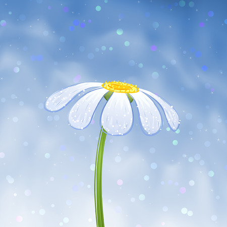 camomiles macro: Blue daisy over blue gradient mesh sky (vector image, other flowers are in my gallery)