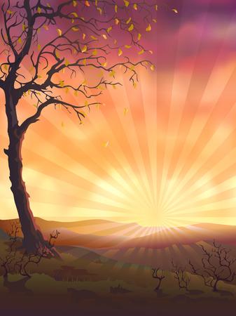 kale: Herfst boom in de avond (andere landschappen zijn in mijn galerij)  Stock Illustratie