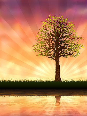 Evening tree reflecting in calm water (vector image, other trees are in my gallery) Vector