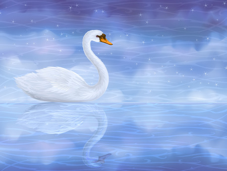 대기의: White mute swan reflecting in clear blue water
