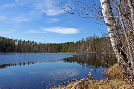 Small, serene lake at spring in Finland with blue skies