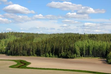 Agricultural landscape with cultivated fields, forest, river and sky in Finland at spring  Stock Photo - 13837916