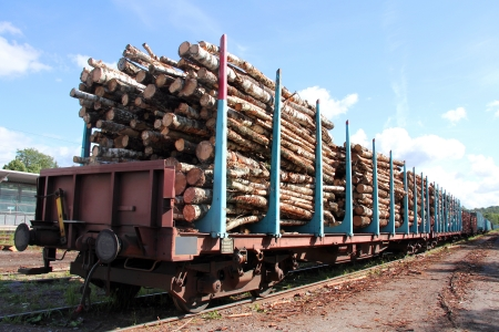 logging railroads: Railcars of wood at the train station ready for transport   Stock Photo