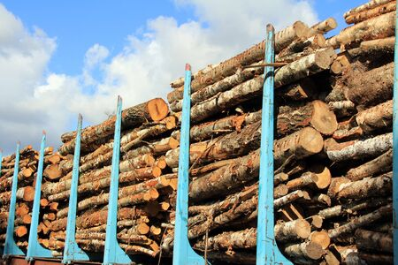 freightliner: Wooden logs stacked on a railcar for transportation