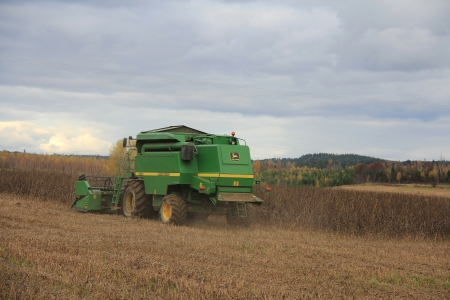 KITULA, FINLAND - OCT 13, 2012: Combine harvesting field bean on October 13, 2012 in Kitula, Finland. Heavy rainfall and flooding in area has caused harvesting season to be several weeks late and some crops are lost. Stock Photo - 15838674