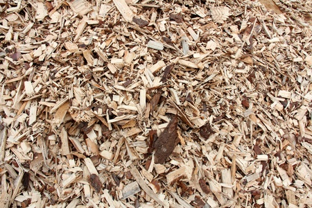 Pile of woodchip for biofuel