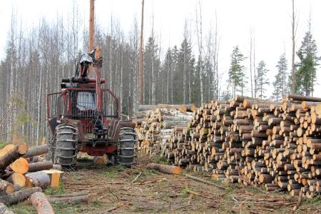 Antiguo tractor forestal y las pilas de registros a principios de explotación forestal bosque de la primavera en Finlandia.