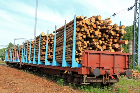 Wooden logs in rail cars at a railway station waiting for transport.