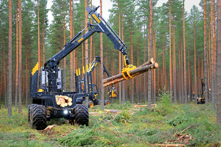 JAMSA, FINLAND - AUGUST 30, 2014: Ponsse forwarder Buffalo collects logs in forest. Ponsse presents its new Model Series 2015 at FinnMETKO 2014.