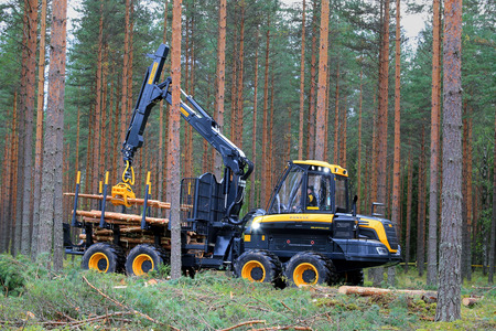 forwarder: JAMSA, FINLAND - AUGUST 30, 2014: Ponsse forwarder Buffalo in a work demo. Ponsse presents its new Model Series 2015 at FinnMETKO 2014.