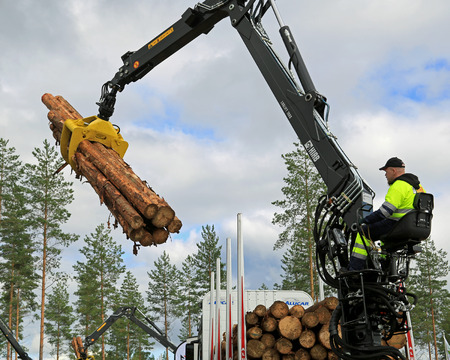 JAMSA, FINLAND - AUGUST 29, 2014: Kari Heinonen wins 2nd prize in Finnish Championships of log  loading at FinnMETKO 2014.