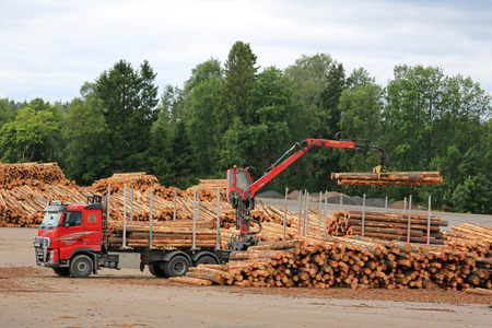 lumber mill: KYRO, FINLAND - AUGUST 1, 2015: Volvo FH and Hiab crane unload pine logs at mill lumber yard. The investments of the Finnish forest industry will increase by 50 percent in 2015. Editorial
