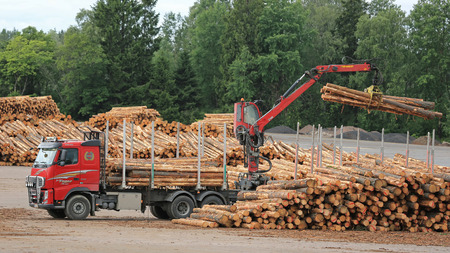 grapple: KYRO, FINLAND - AUGUST 1, 2015: Volvo FH and Hiab crane unload pine logs at mill lumber yard. The investments of the Finnish forest industry will increase by 50 percent in 2015. Editorial