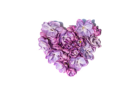 Lilac flowers heart isolated on a white background