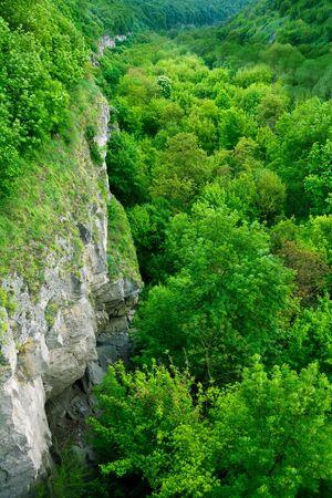 canyon walls: Canyon walls view in Kamyanets-Podilskyi city, Ukraine