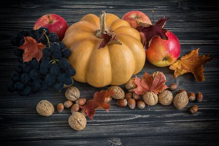 happy life: Pumpkin, apple, nuts, berries, grapes with maple leaves on wooden background. Autumn card. Vintage toned effect