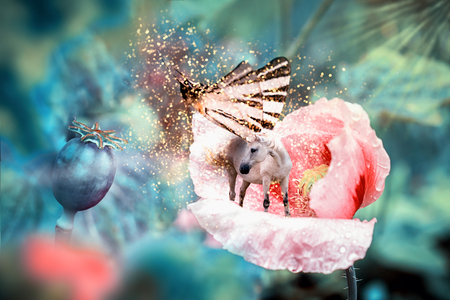 White fairy unicorn with butterfly wings on blooming pink poppy flower. Realistic fairytale magic manipulation. Vintage toned.
