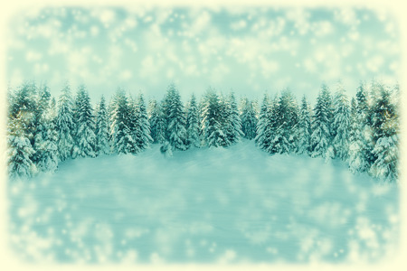 White Christmas greeting card background. Snowfall forest landscape with copy space. Winter landscape with fir trees covered with snow. Soft vintage toned.