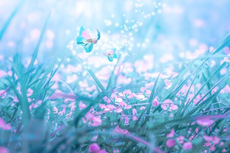 Beautiful micro Veronica persica wildflowers, butterfly in the dreamy meadow. Delicate pink and blue colors pastel toned. Shallow depth macro background. Greeting card template. Copy space. Nature floral springtime. Stock Photo - 132118033