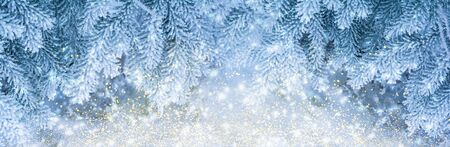 Beautiful fir tree covered snow and rime, closeup. Christmas panoramic background with sparkles, copy space. Holiday spruce branches panorama, falling snowflakes. Nature winter mixed media art. Soft blue golden toned. 版權商用圖片