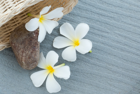 scincare: Spa and wellness composition with have white Frangipani flowers and stone in the wood basket on gray background