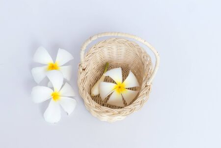 White frangipani (plumeria) flower in wood basket  isolated on white background.Spa composition for background