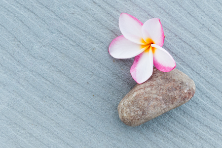 scincare: Spa and wellness composition with have frangipani flowers and stone on gray background