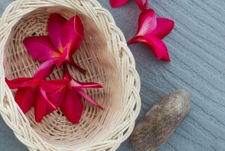 scincare: Pink frangipani flowers and stone in the wood basket on gray background.Spa and wellness composition for background