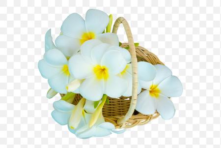 Frangipani flowers the wood basket