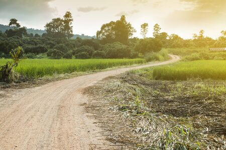 Rural road on countryside in Thailand. Stock Photo