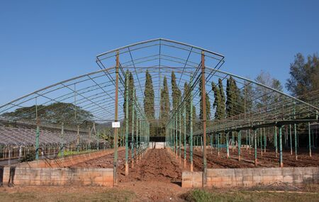 Vegetable greenhouse.