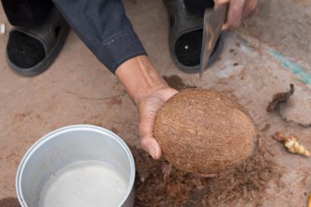 noix: Close up of coconut.