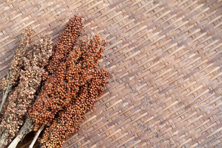 Drying millet twigs on bamboo table background dried process.