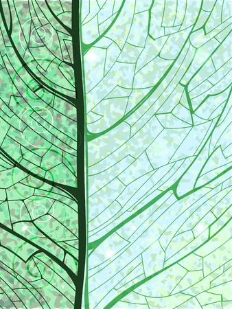 Hand drawn green vertical background with pattern of the leaf structure   Ilustrace
