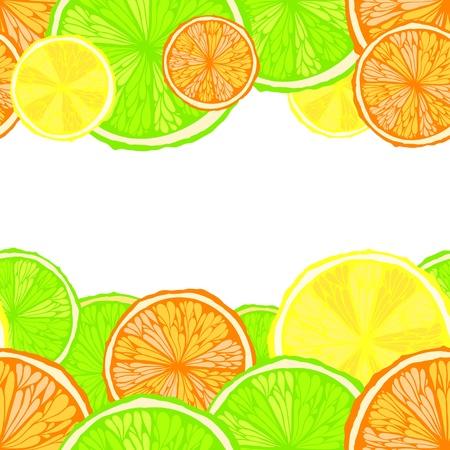 Bright seamless citrus background with space for text    Vector