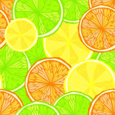 Bright hand drawn seamless background with oranges, lemons and limes    Vector