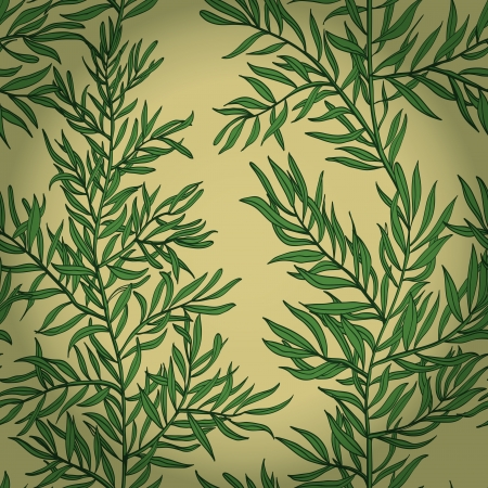 Seamless vintage hand drawn background with green rosemary    Vector