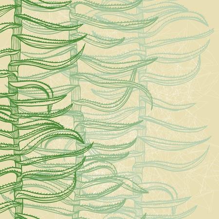 Seamless monochrome hand drawn background with aloe vera plants Stock Vector - 20697447