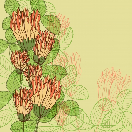 Retro hand drawn greeting card with clover flowers and leaves Vector
