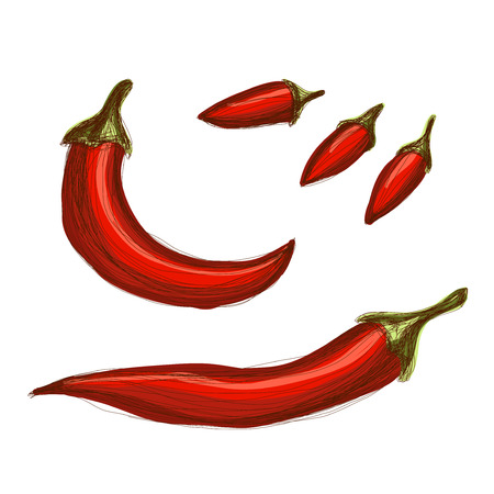 Set of hand drawn red chili peppers over white background Illustration