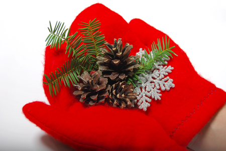 Christmas red mittens. Fir cone, snowflake and a sprig of Christmas trees. On a white background.