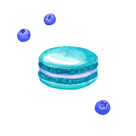 Blue macaron and bluberries. Hand drawn watercolor illustration. Isolated on white background.