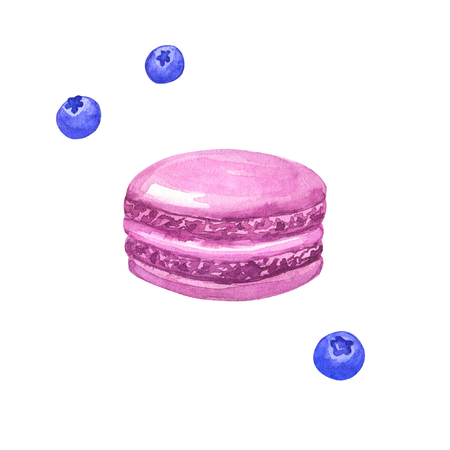 Purple macaron and bluberries. Hand drawn watercolor illustration. Isolated on white background.