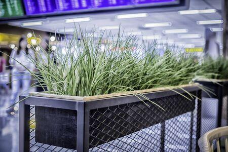 net: Grass in Flowerpot